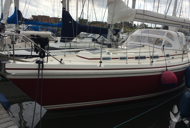 Contest 32 CS KETCH Rode Tulp